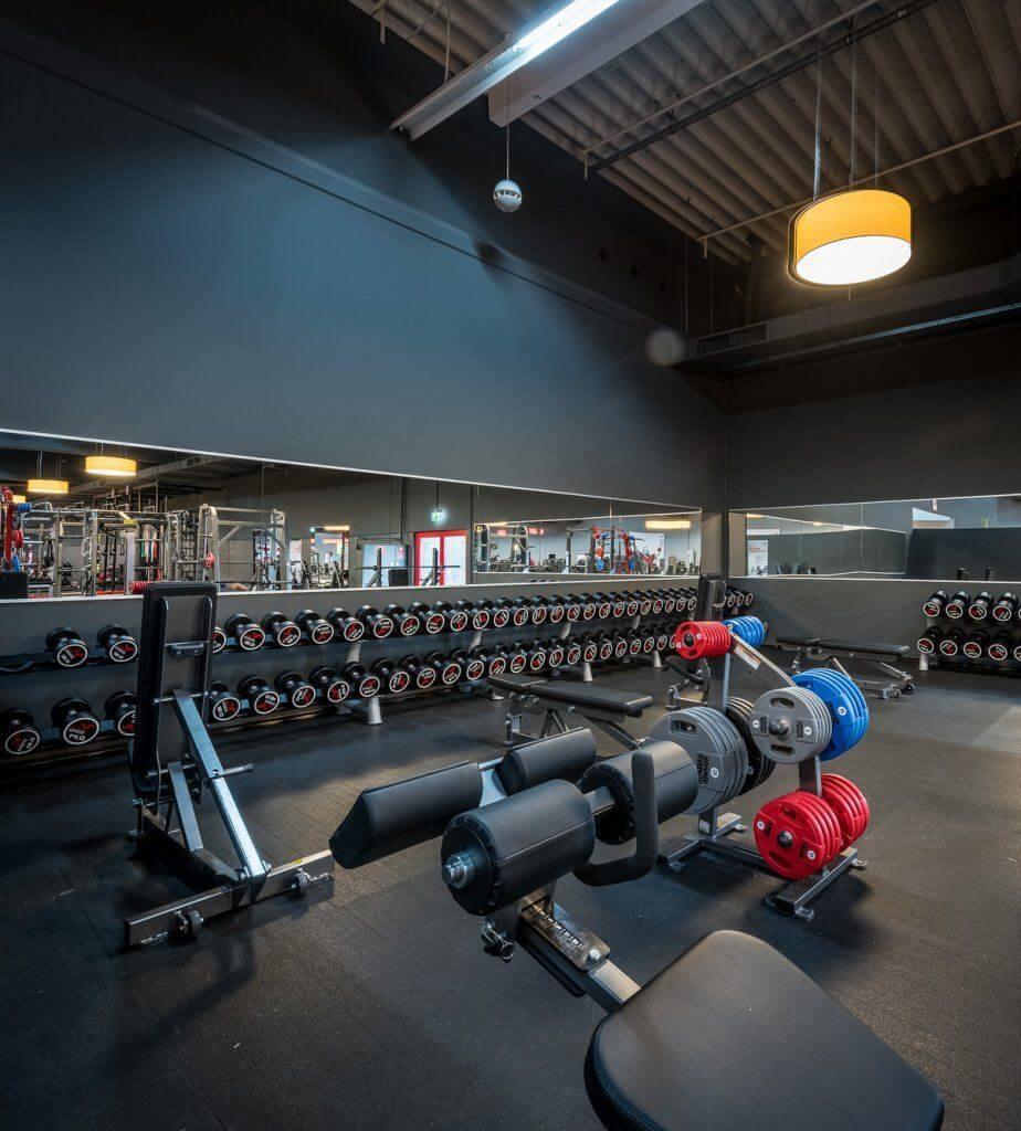 freihanteltraining viva fitness 2